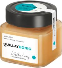 Walter Lang Quillayhonig, Chile, 275 gr Glas