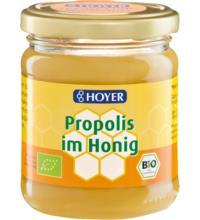 Hoyer Propolis im Honig, 250 gr Glas