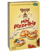Bauck Hof Pizzateig, 350 gr Packung -glutenfrei-