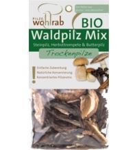 Wohlrab Pilze Waldpilz Mix, getrocknet, 30 gr Packung