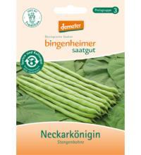 Bingenheimer Saatgut Stangenbohne `Neckarkönigin`, 20 gr Tüte