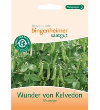 Bingenheimer Saatgut Markerbse `Wunder von Kelvedon`, 35 gr Tüte