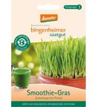 Bingenheimer Saatgut Smoothie-Gras, 60 gr Tüte