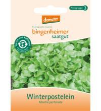 Bingenheimer Saatgut Winterpostelein, 1 gr Tüte