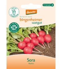 Bingenheimer Saatgut Radieschen, Sora, 7 gr Tüte