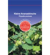 DE Bolster Kleine Ananaskirsche, KP, 1 gr Tüte