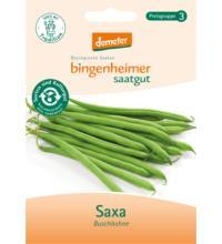 Bingenheimer Saatgut Buschbohne Saxa, 35 gr Tüte