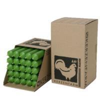 Kerzenfarm Paraffin Stabkerze, grün, ca. 180/22 mm, 1 Stück