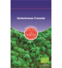 DE Bolster Gartenkresse Cressida KP, 1x 15 gr Tüte